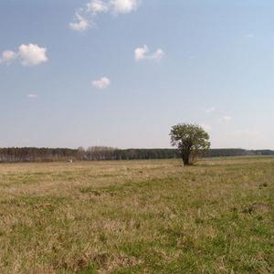 Продам или обменяю земельный участок 3Га.