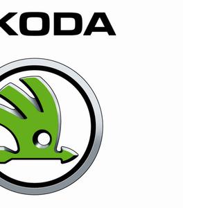 Компьютерная диагностика всех автомобилей марки Skoda