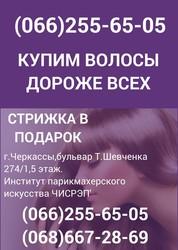 Скупка волос в Черкассах Продать волосы дорого Закупка волос Черкассы